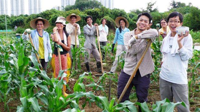 Hong Kongs inbyggere i Mapopo