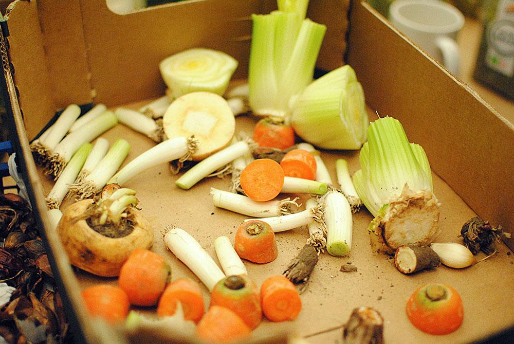 Regrow toppe af gulerødder og bunde af bladselleri og persillerod.
