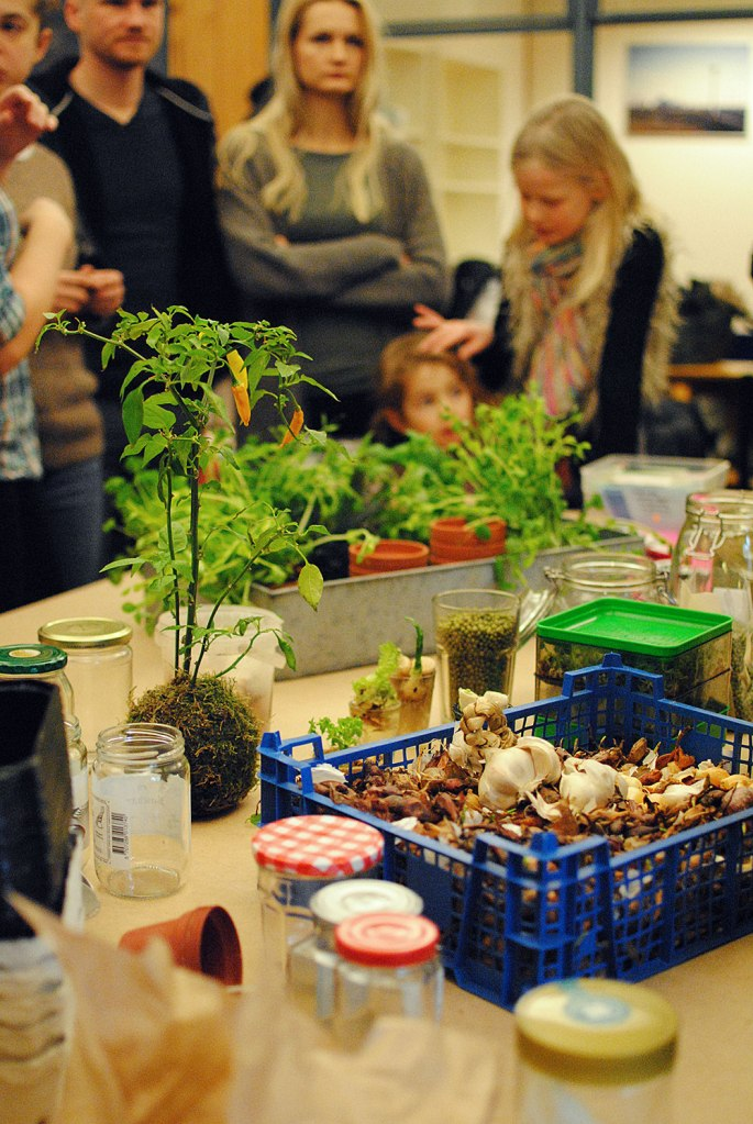 Winter-window-garden Workshop d. 12. januar 2013