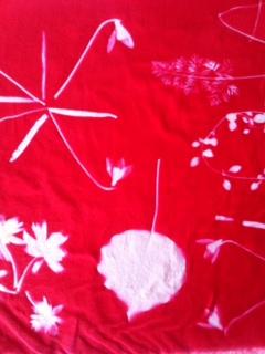 Sunprint rød