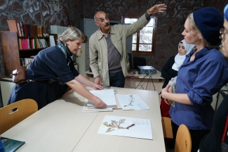 Conservation of native wild plants project at The Dar Taliba boarding school for girls