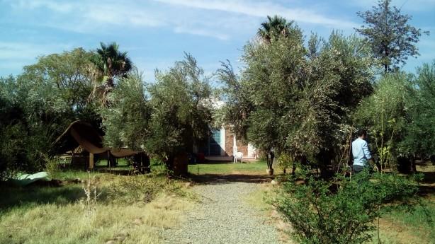 Marrakech Organics